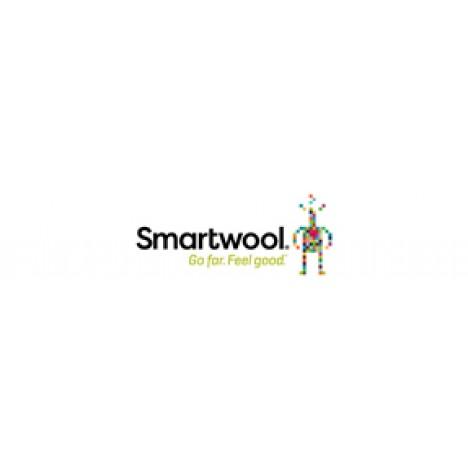 Smartwool Merino 150 Baselayer Short Sleeve